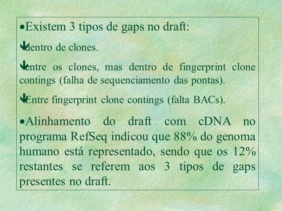 Existem 3 tipos de gaps no draft: