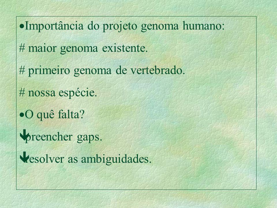 Importância do projeto genoma humano: