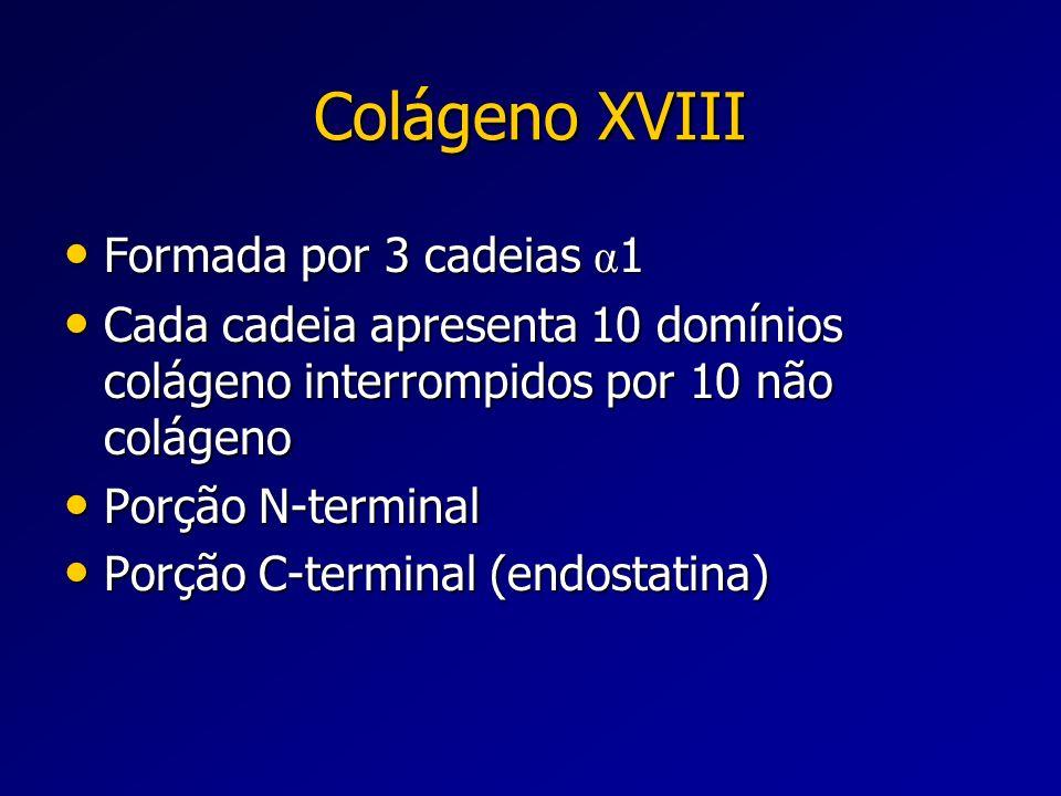 Colágeno XVIII Formada por 3 cadeias α1