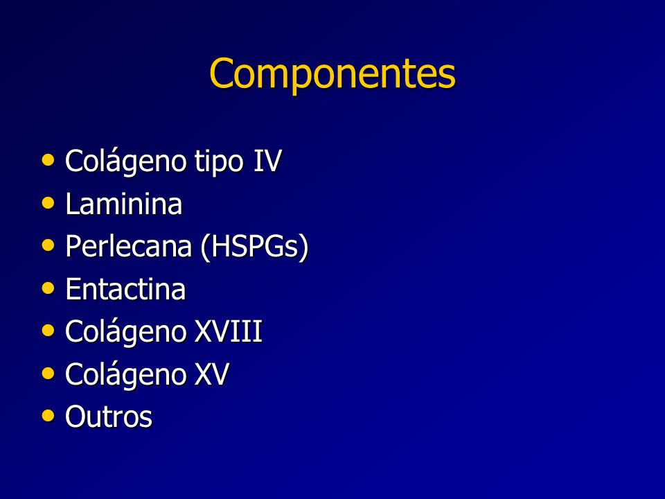 Componentes Colágeno tipo IV Laminina Perlecana (HSPGs) Entactina