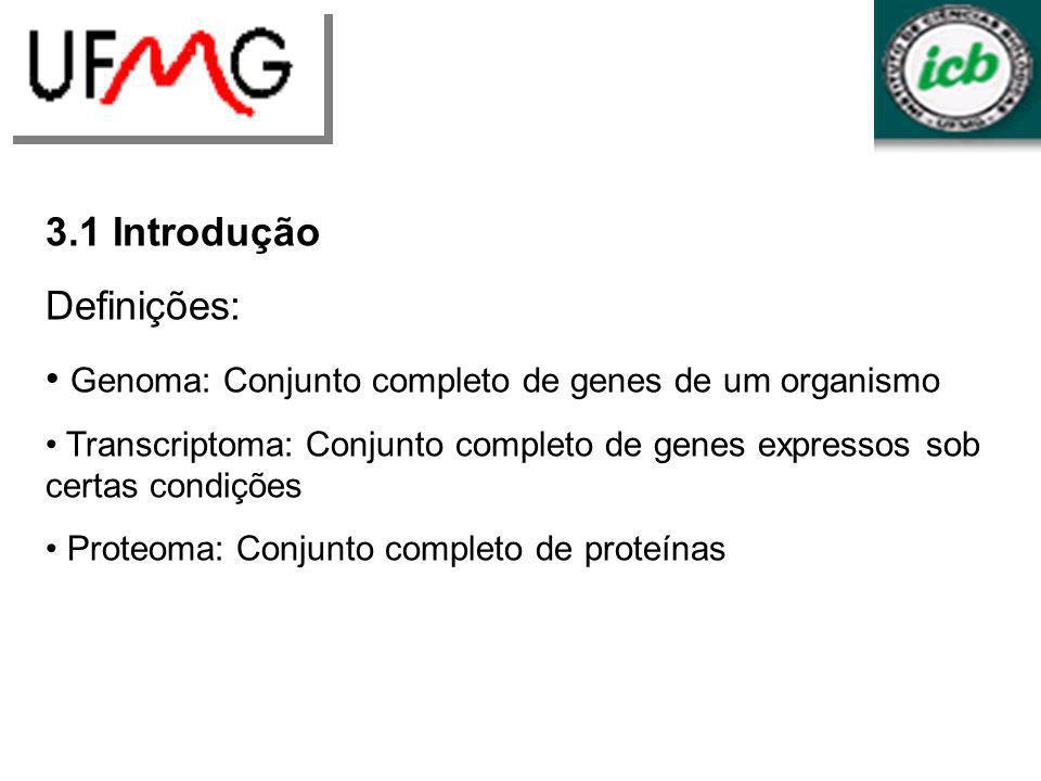 LGCM URLGA 3.1 Introdução Definições: