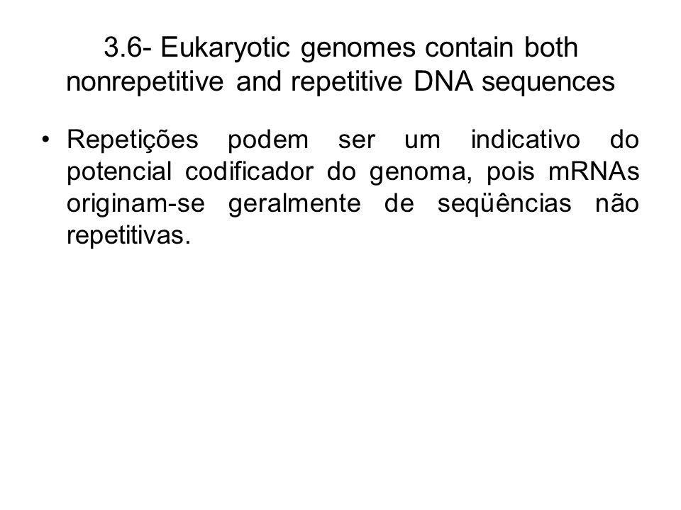 3.6- Eukaryotic genomes contain both nonrepetitive and repetitive DNA sequences