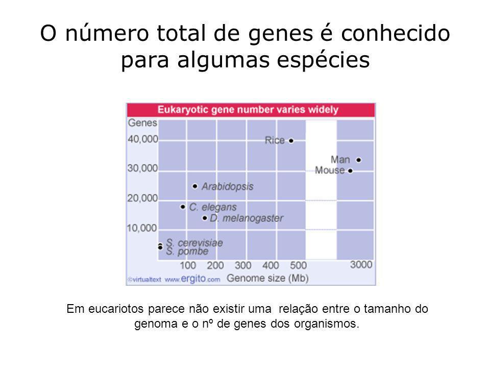 O número total de genes é conhecido para algumas espécies
