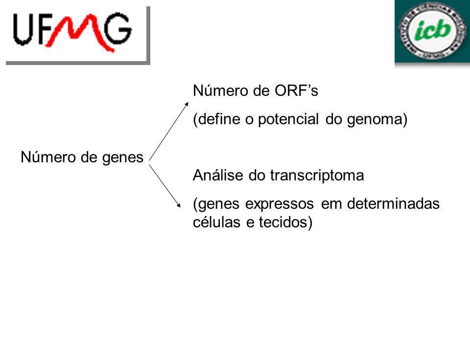LGCM URLGA Número de ORF's (define o potencial do genoma)