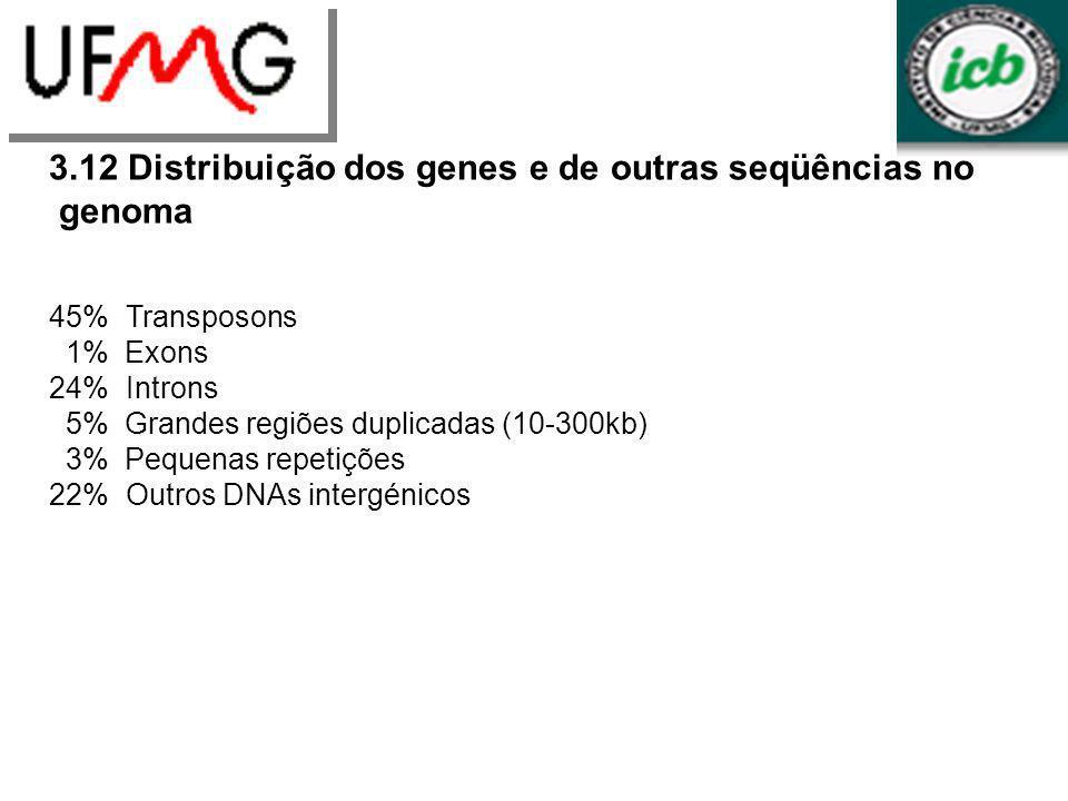 3.12 Distribuição dos genes e de outras seqüências no genoma