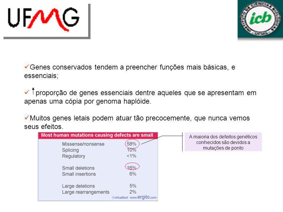 Genes conservados tendem a preencher funções mais básicas, e essenciais;