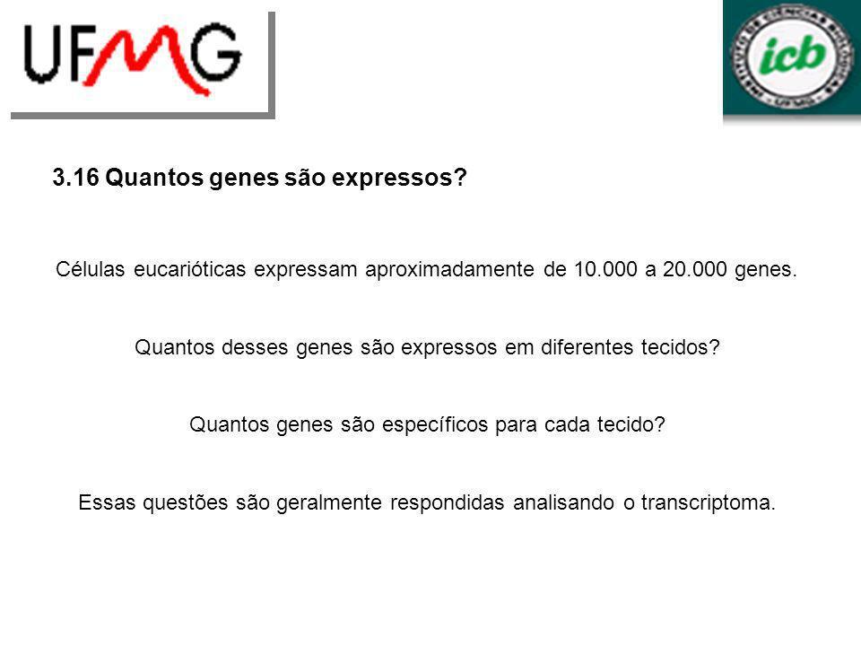 3.16 Quantos genes são expressos