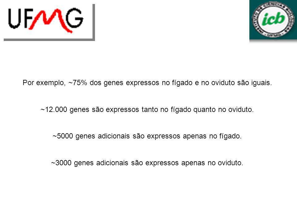 ~12.000 genes são expressos tanto no fígado quanto no oviduto.