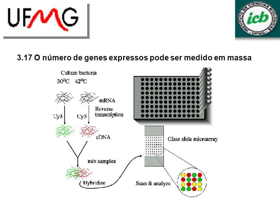 3.17 O número de genes expressos pode ser medido em massa