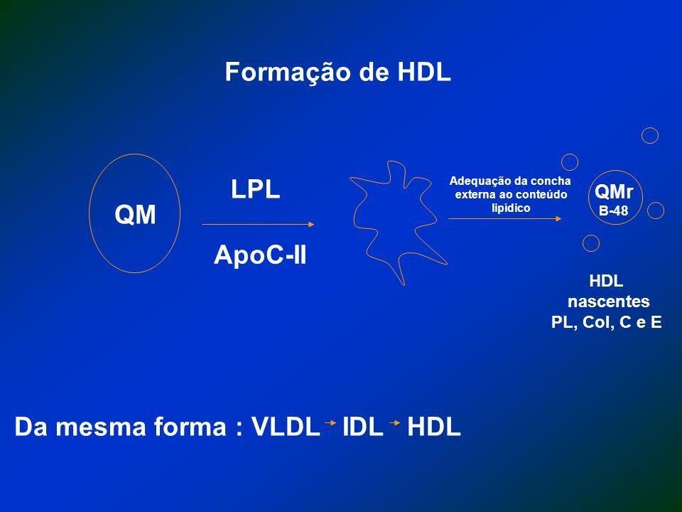Da mesma forma : VLDL IDL HDL