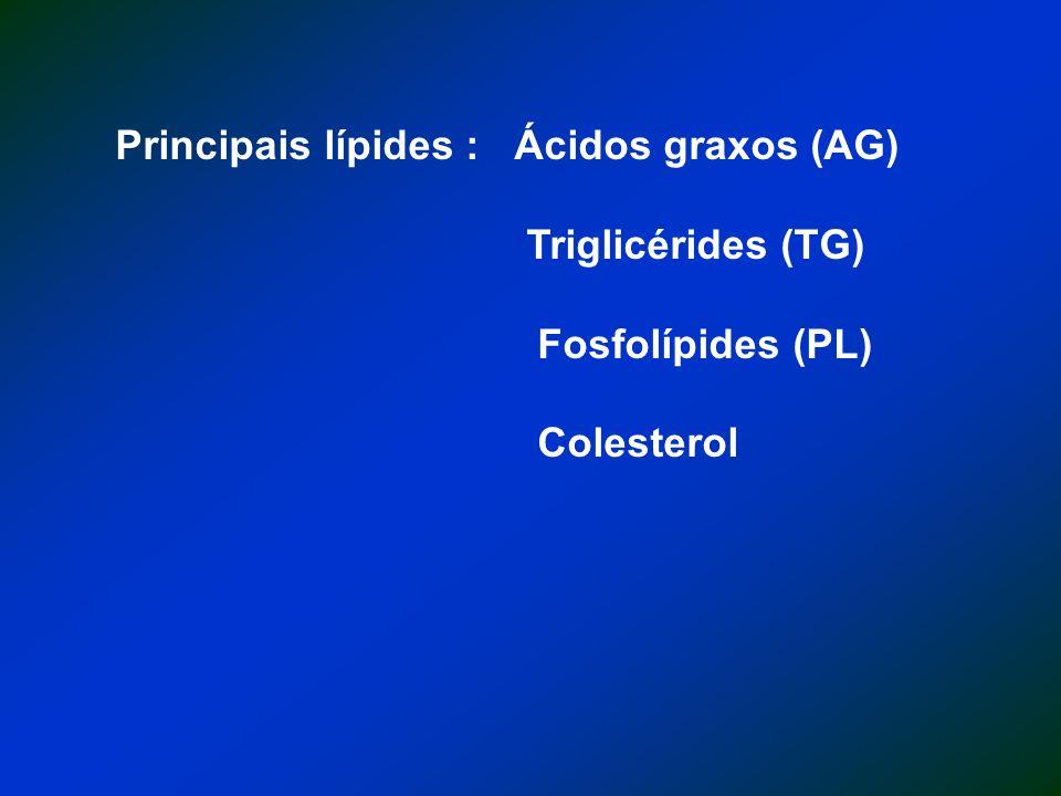 Principais lípides : Ácidos graxos (AG)