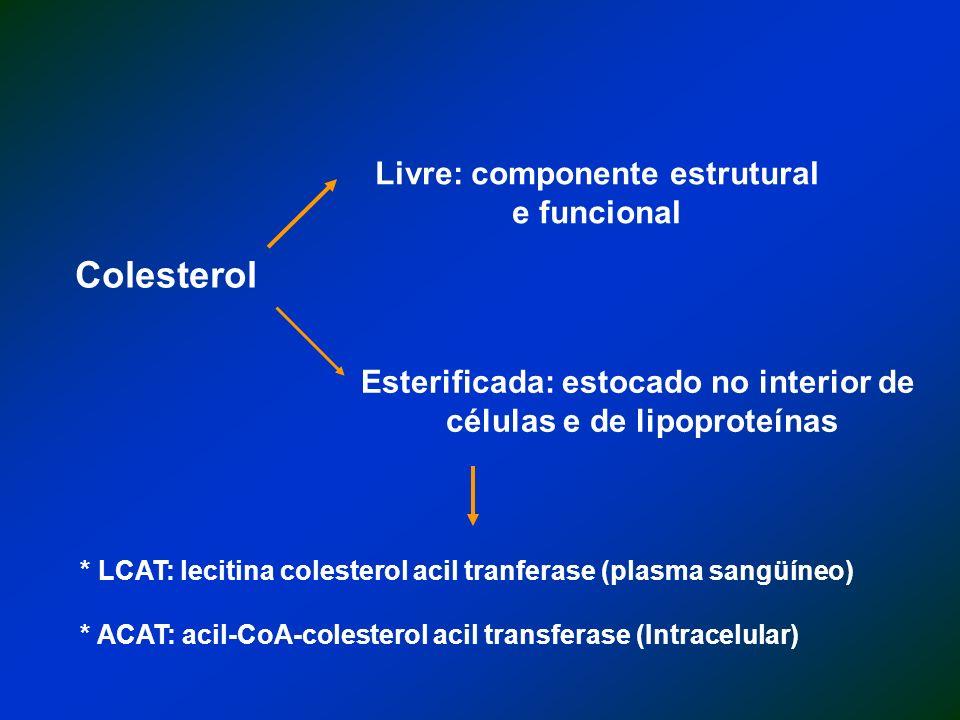 Colesterol Livre: componente estrutural e funcional