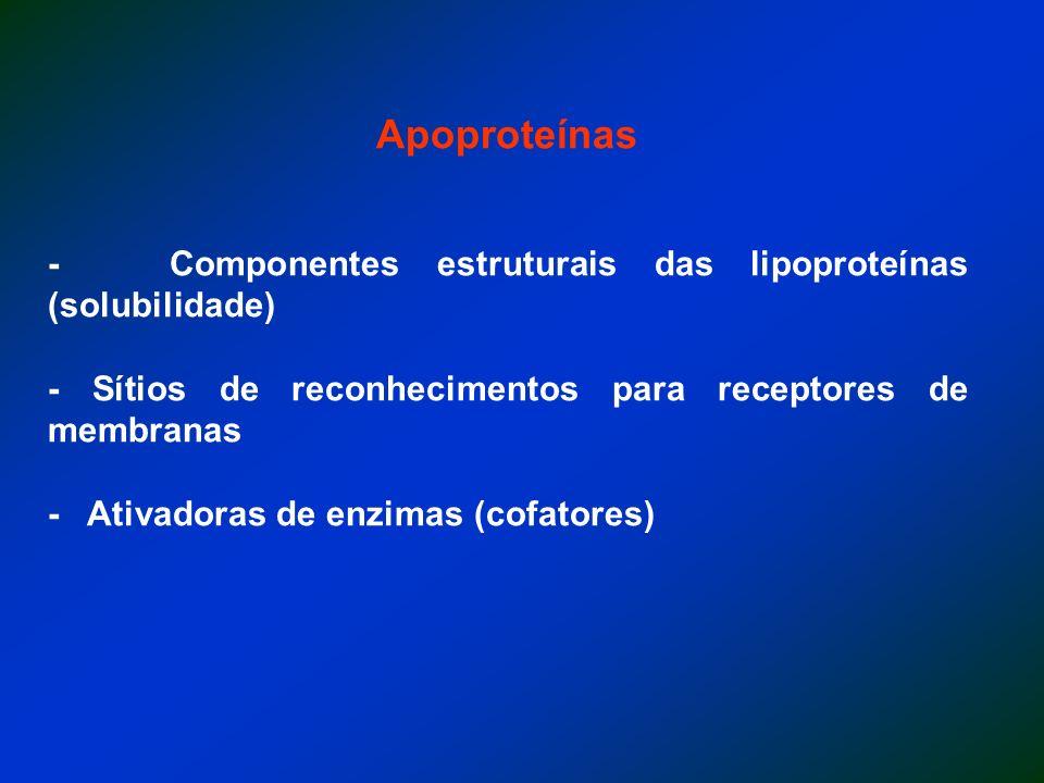 Apoproteínas - Componentes estruturais das lipoproteínas (solubilidade) - Sítios de reconhecimentos para receptores de membranas.