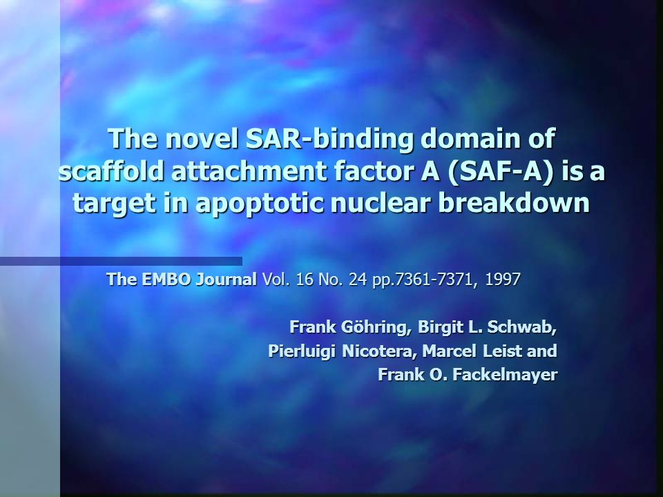 The novel SAR-binding domain of scaffold attachment factor A (SAF-A) is a target in apoptotic nuclear breakdown