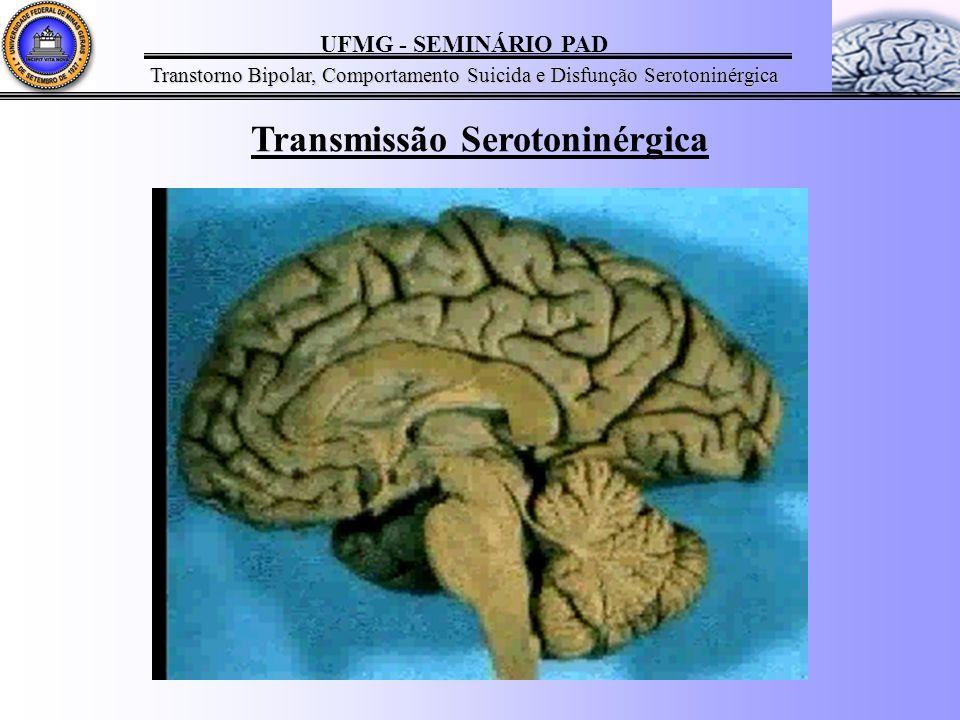 Transmissão Serotoninérgica