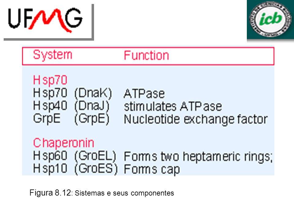 Figura 8.12: Sistemas e seus componentes
