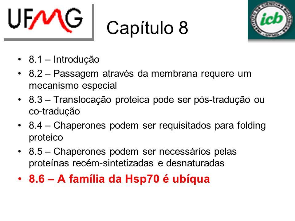 Capítulo 8 8.6 – A família da Hsp70 é ubíqua 8.1 – Introdução