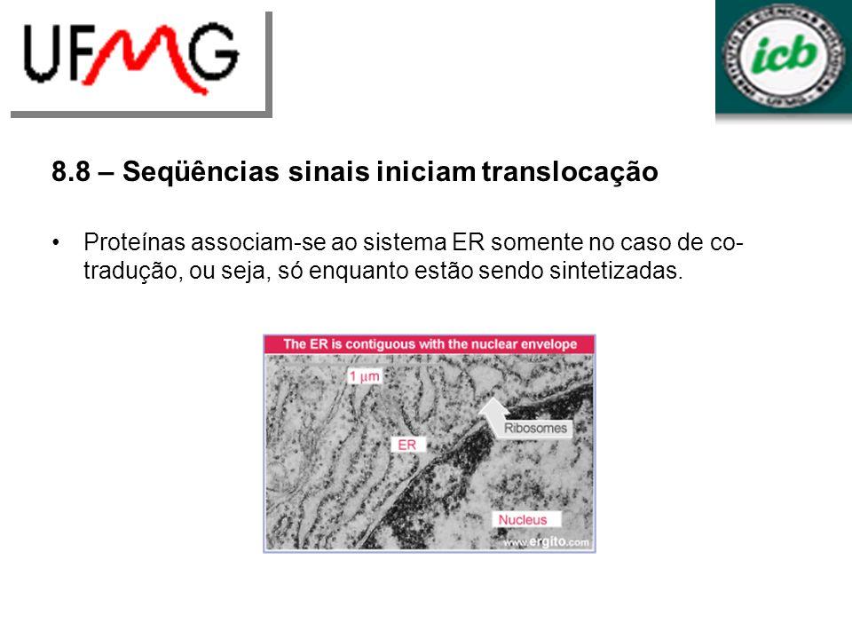 8.8 – Seqüências sinais iniciam translocação