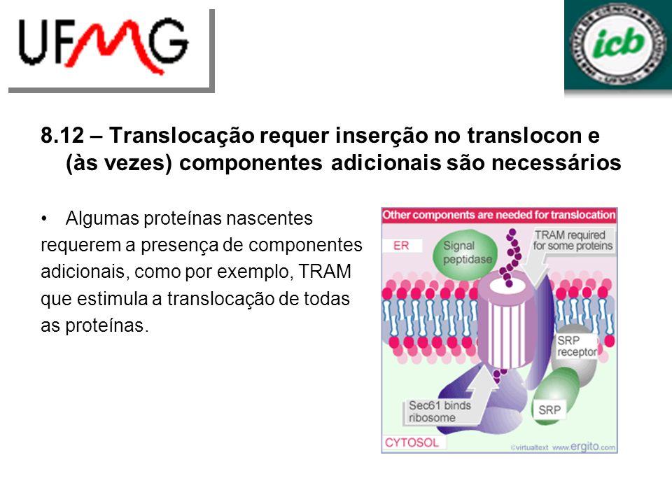 8.12 – Translocação requer inserção no translocon e (às vezes) componentes adicionais são necessários