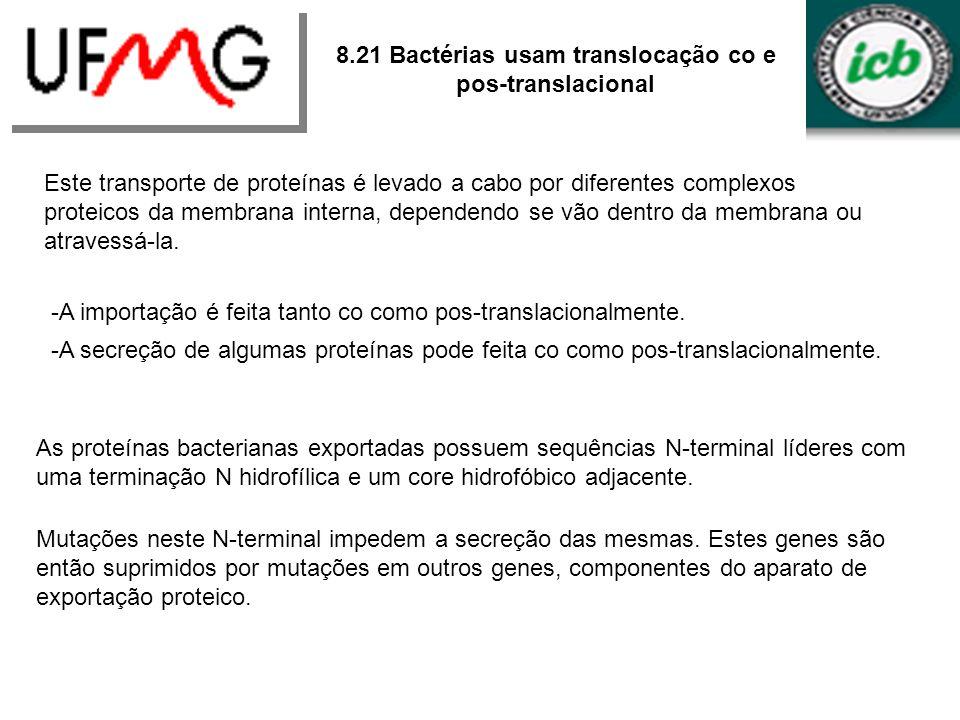 8.21 Bactérias usam translocação co e pos-translacional