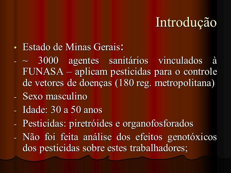 Introdução Estado de Minas Gerais: