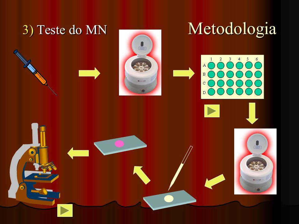 3) Teste do MN Metodologia