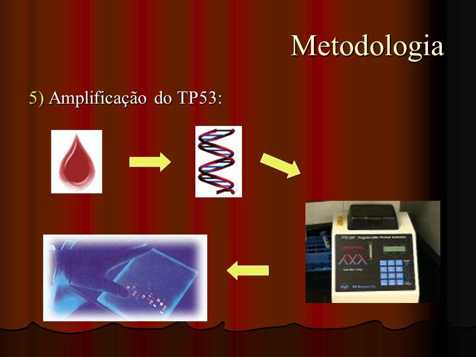Metodologia 5) Amplificação do TP53: