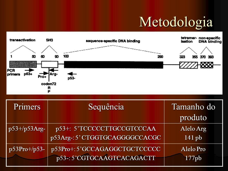 Metodologia Primers Sequência Tamanho do produto p53+/p53Arg-