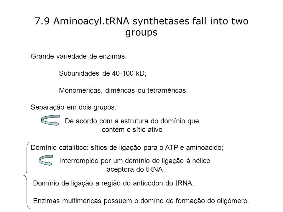7.9 Aminoacyl.tRNA synthetases fall into two groups