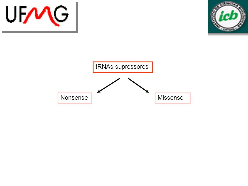 tRNAs supressores Nonsense Missense