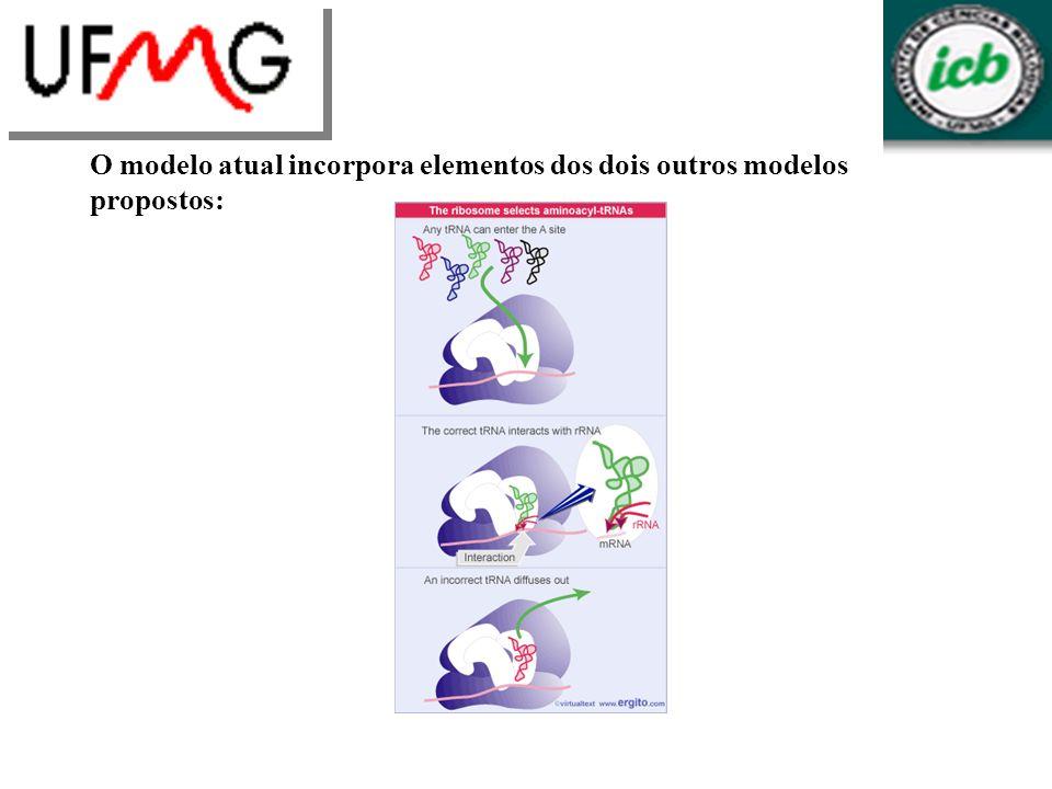 O modelo atual incorpora elementos dos dois outros modelos propostos: