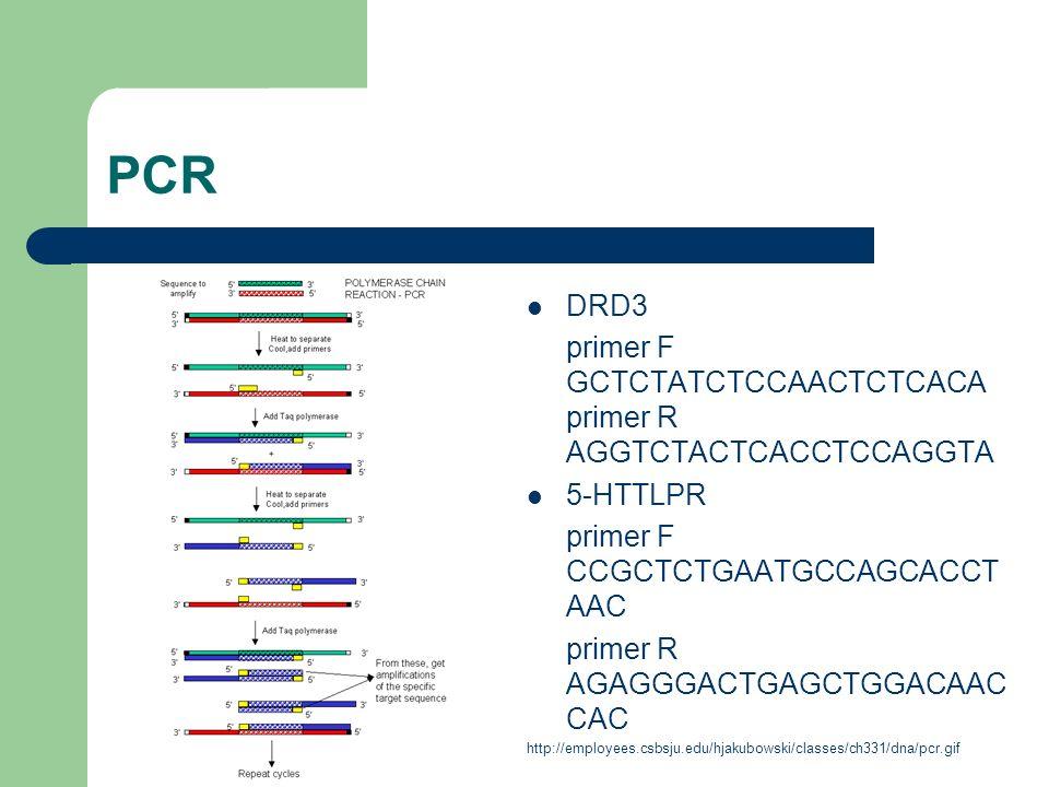 PCR DRD3 primer F GCTCTATCTCCAACTCTCACA primer R AGGTCTACTCACCTCCAGGTA