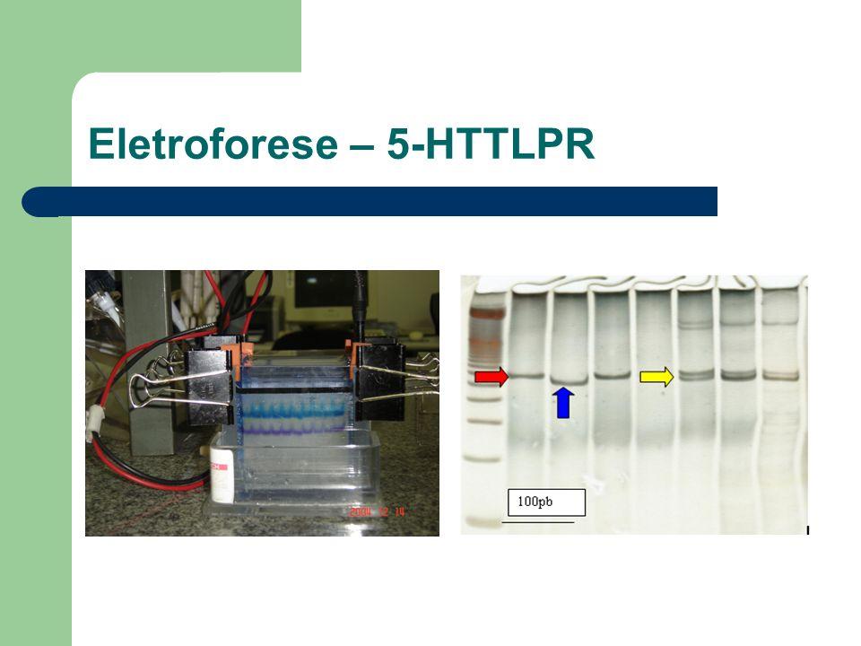Eletroforese – 5-HTTLPR