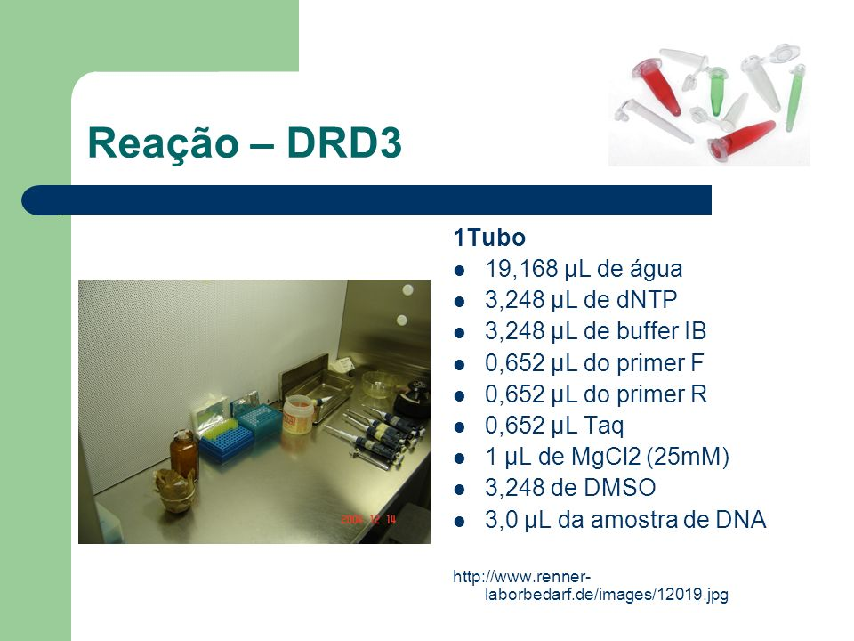 Reação – DRD3 1Tubo 19,168 μL de água 3,248 μL de dNTP