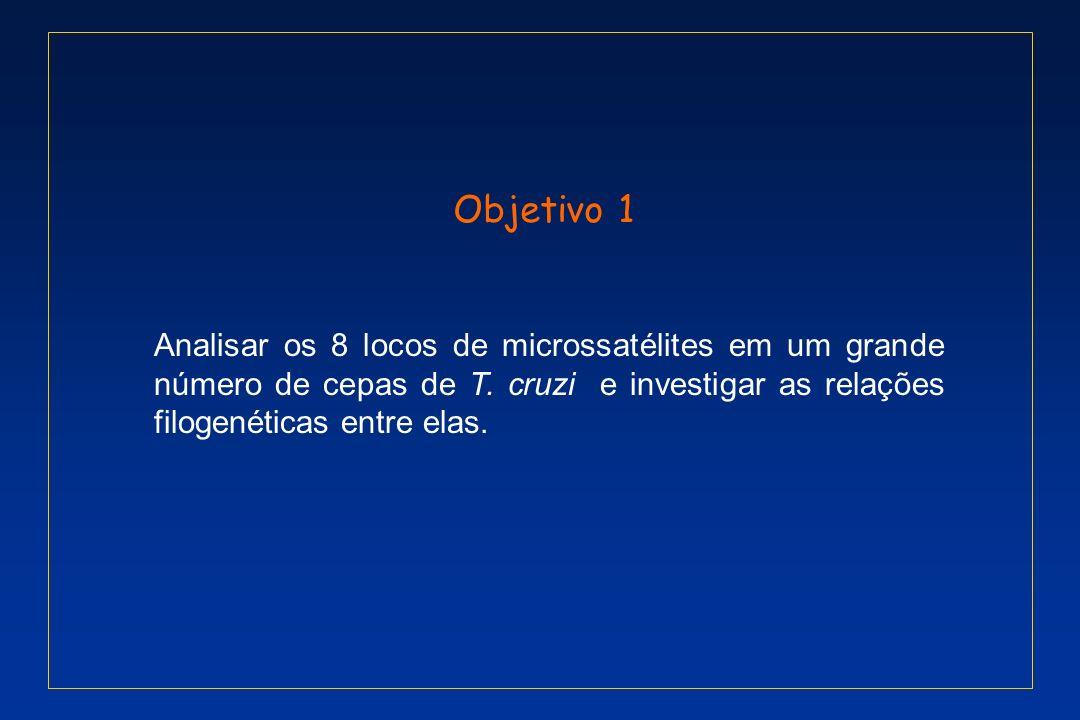 Objetivo 1 Analisar os 8 locos de microssatélites em um grande número de cepas de T.