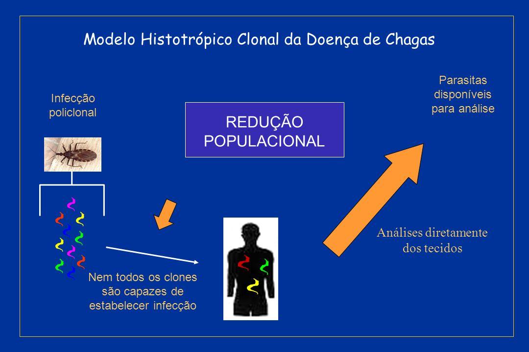 Modelo Histotrópico Clonal da Doença de Chagas