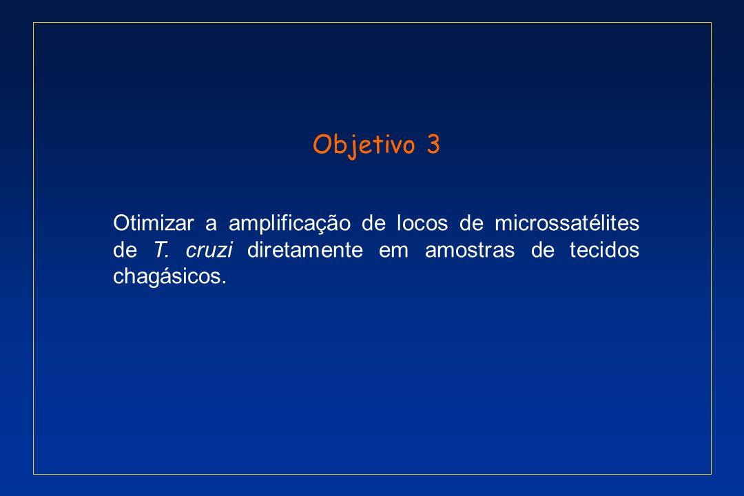 Objetivo 3 Otimizar a amplificação de locos de microssatélites de T.
