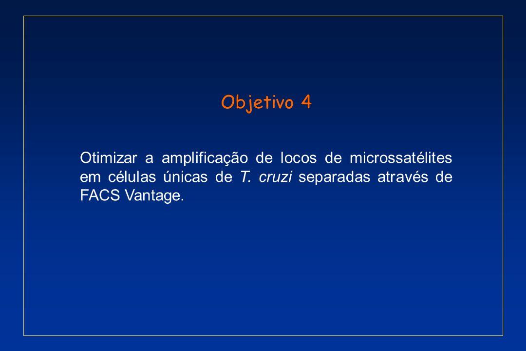 Objetivo 4 Otimizar a amplificação de locos de microssatélites em células únicas de T.