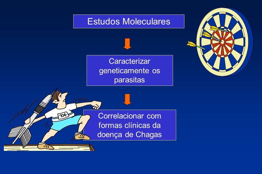 Estudos Moleculares Caracterizar geneticamente os parasitas