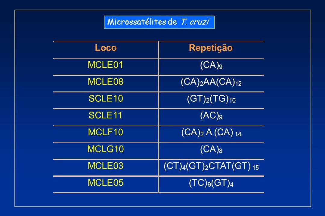 Loco Repetição MCLE01 (CA) MCLE08 (CA) AA(CA) SCLE10 (GT) (TG) SCLE11