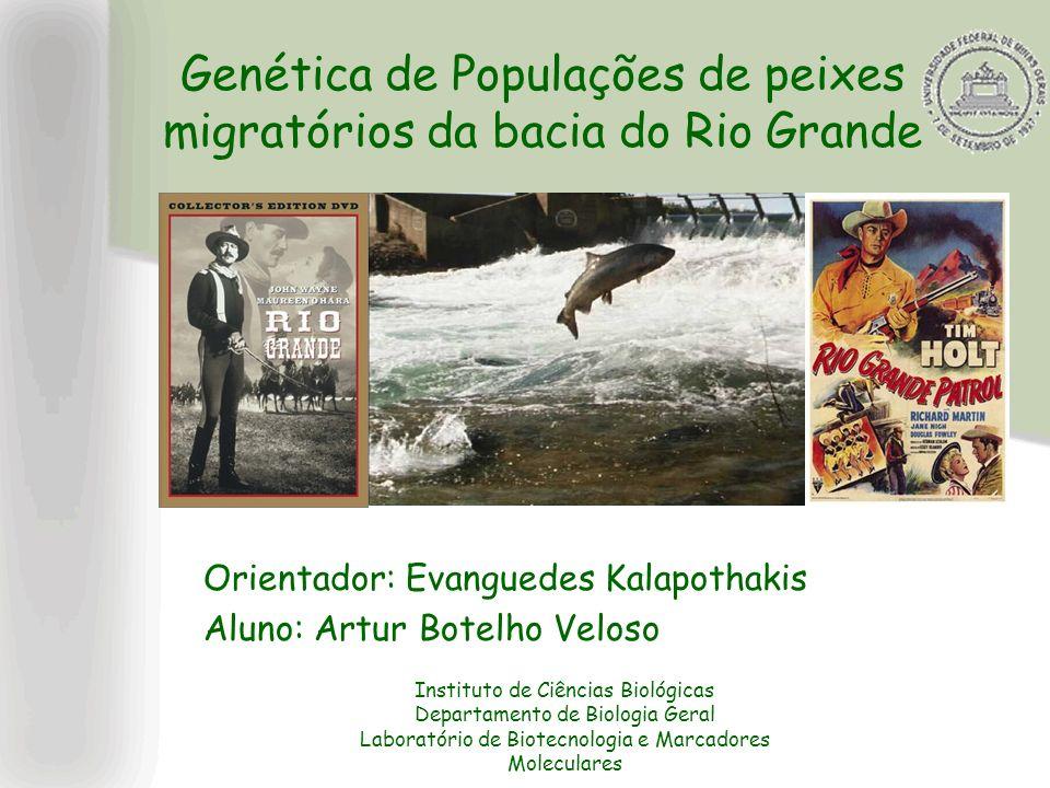 Genética de Populações de peixes migratórios da bacia do Rio Grande