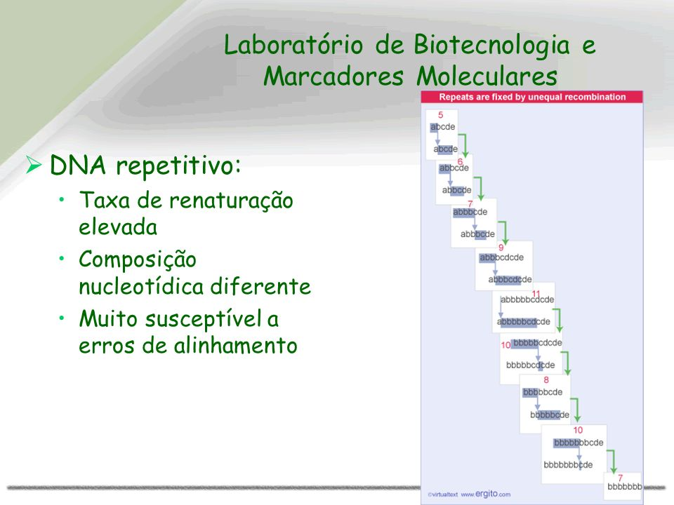 Laboratório de Biotecnologia e Marcadores Moleculares