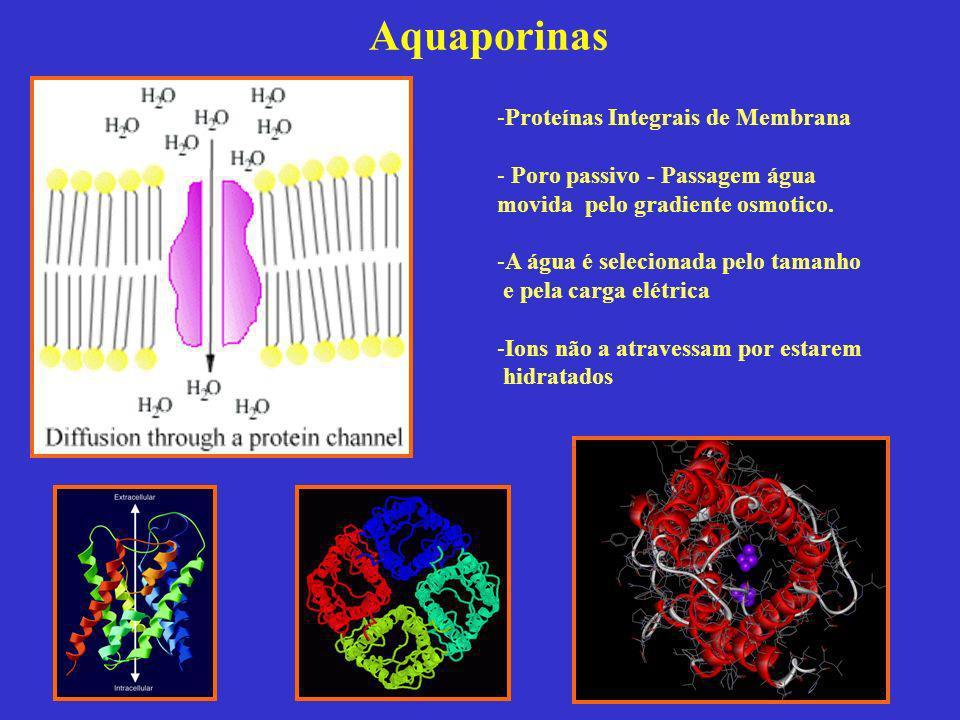 Aquaporinas Proteínas Integrais de Membrana