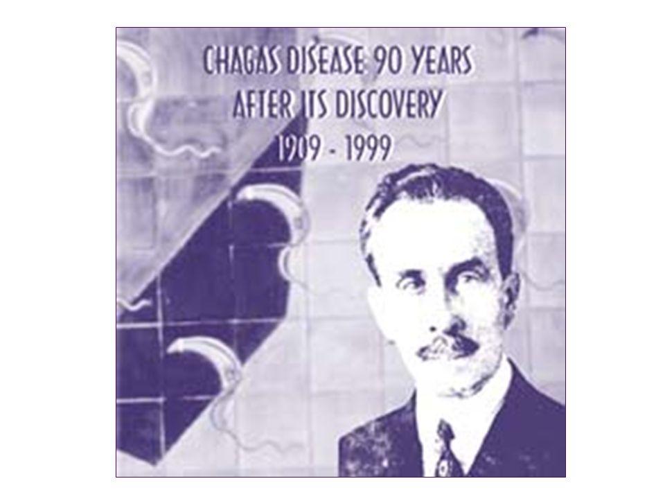 Durante a conferência internacional comemorativa dos 90 anos da descoberta da doença de Chagas realizada no Rio de Janeiro, foi proposta uma nova nomenclatura para o grupo T.