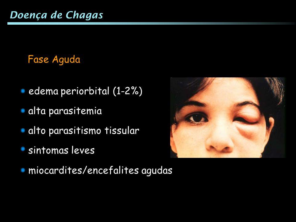 miocardites/encefalites agudas