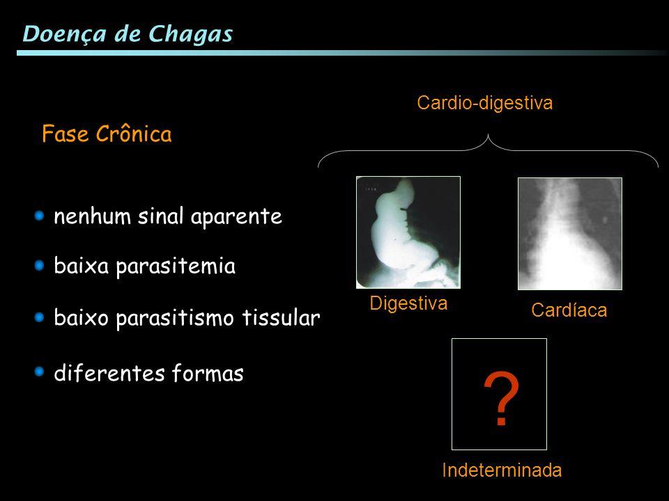 Doença de Chagas Fase Crônica nenhum sinal aparente