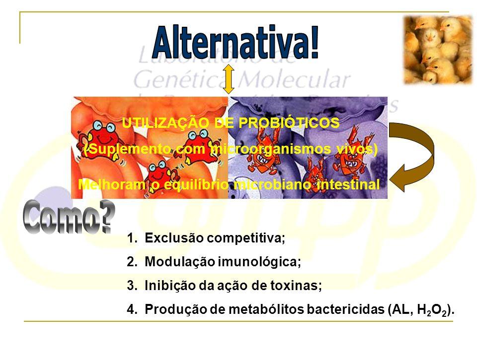 UTILIZAÇÃO DE PROBIÓTICOS (Suplemento com microorganismos vivos)