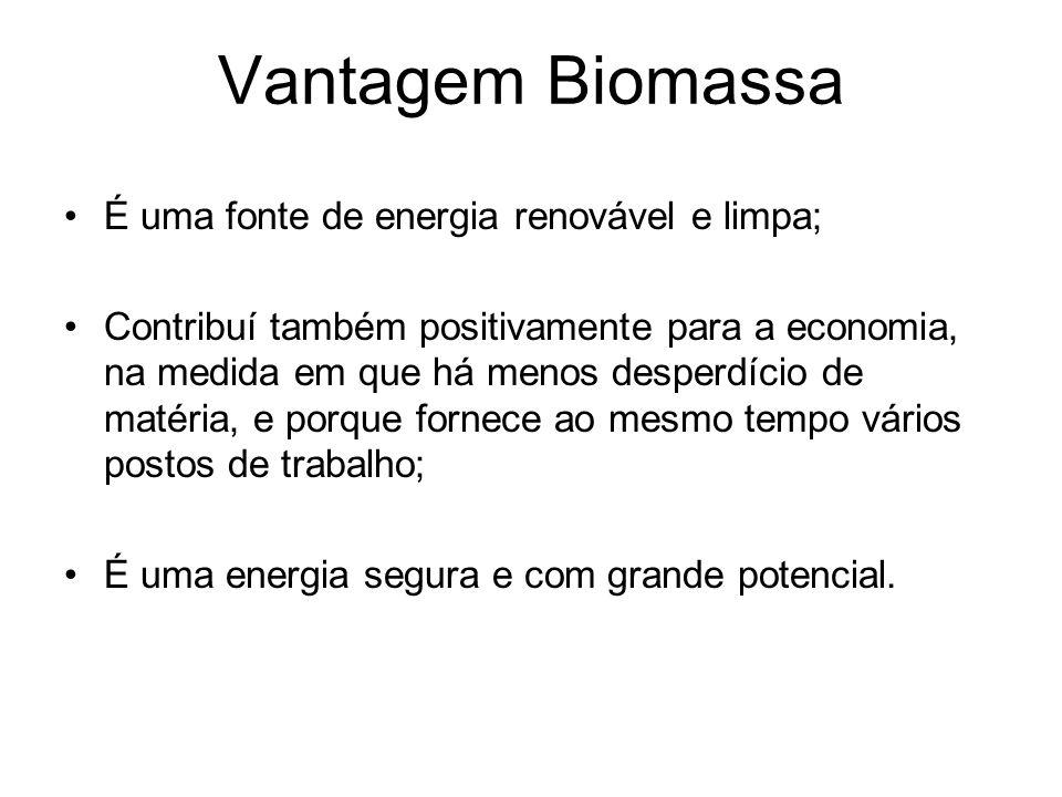 Vantagem Biomassa É uma fonte de energia renovável e limpa;