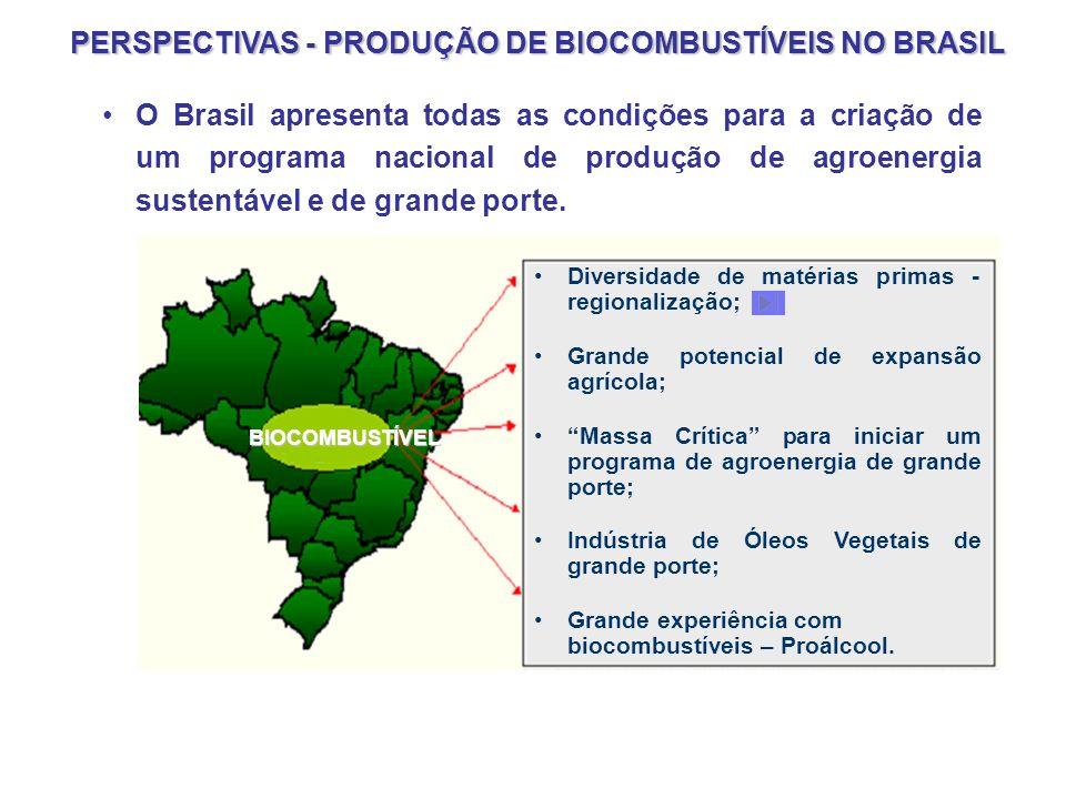 PERSPECTIVAS - PRODUÇÃO DE BIOCOMBUSTÍVEIS NO BRASIL