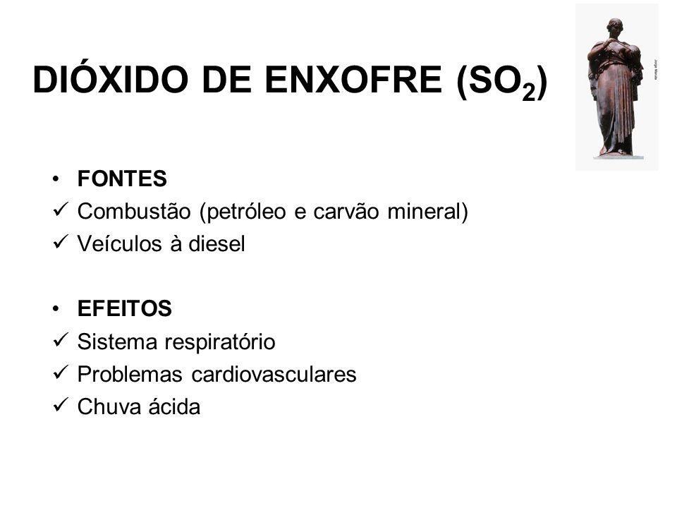 DIÓXIDO DE ENXOFRE (SO2)